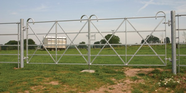 Estate – Double Leaf Gate with Posts