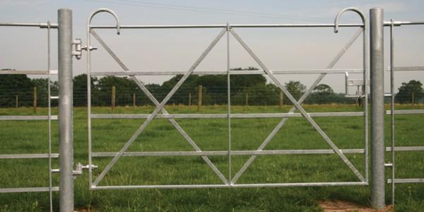 Estate – Single Leaf Gate with Posts