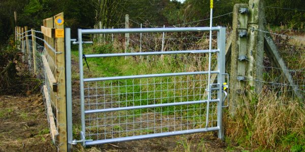 Denstone 2 Way Pedestrian Gate